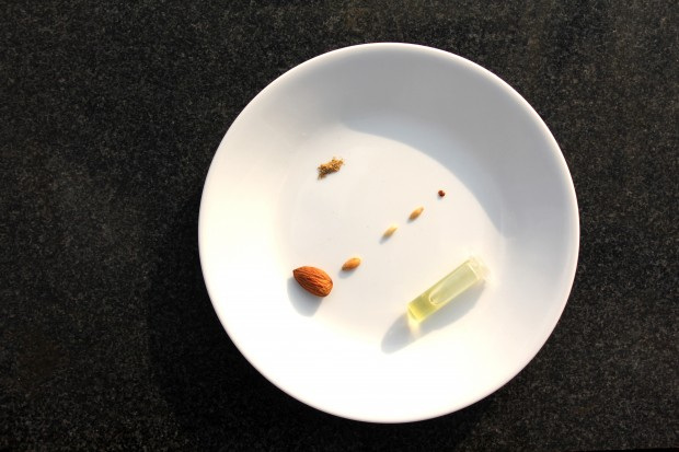 http://genomicgastronomy.com/wp-content/uploads/2011/12/seeds-620x413.jpg
