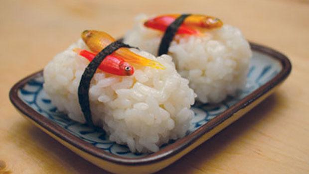 http://genomicgastronomy.com/wp-content/uploads/2012/07/620x350_sushi1.jpg