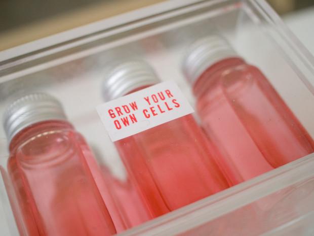 http://genomicgastronomy.com/wp-content/uploads/2013/09/DD_cells-620x465.jpg