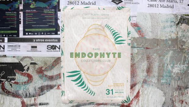http://genomicgastronomy.com/wp-content/uploads/2016/07/EndophyteCollectorsClub_08-620x352.jpg