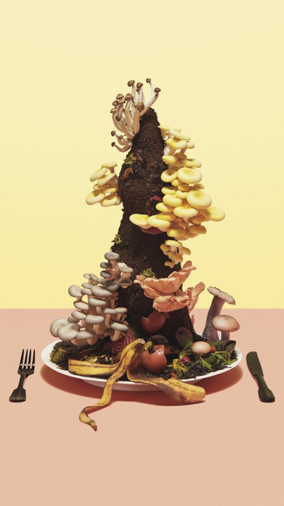 http://genomicgastronomy.com/wp-content/uploads/2019/07/Food_mushroom_image_1080x1920-562x999.jpg