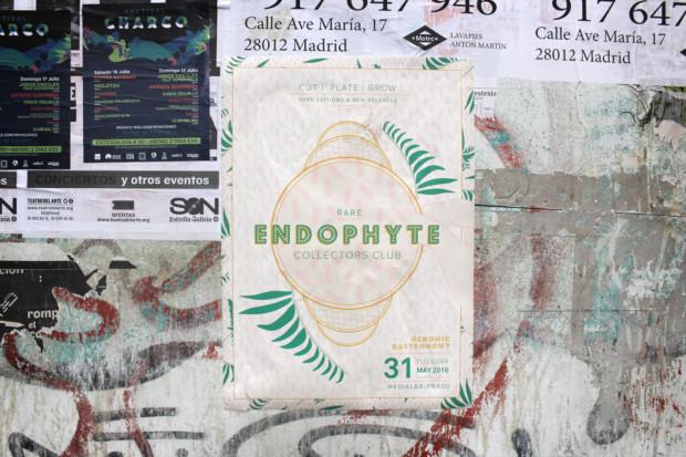 https://genomicgastronomy.com/wp-content/uploads/2016/07/EndophyteCollectorsClub_08-620x413.jpg